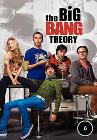 The Big Bang Theory S06E10
